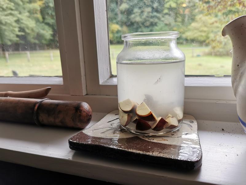 waschmittel saponine kastanien aufguss